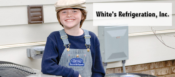 Whites Refrigeration